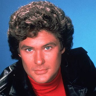 david_hasselhoff on big brother 13