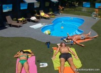 houseguests laying by the pool